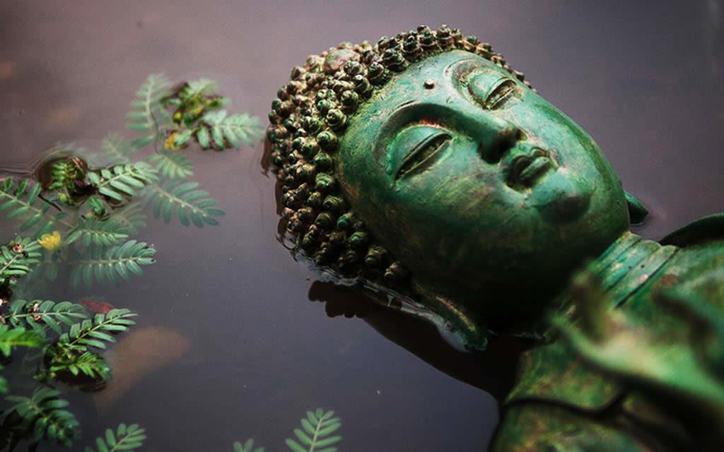 Gautam Buddha Boxshot