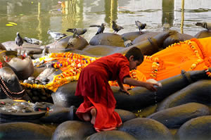 Lord Vishnu's Daily Journey